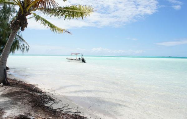 Blue lagoon Teahatea